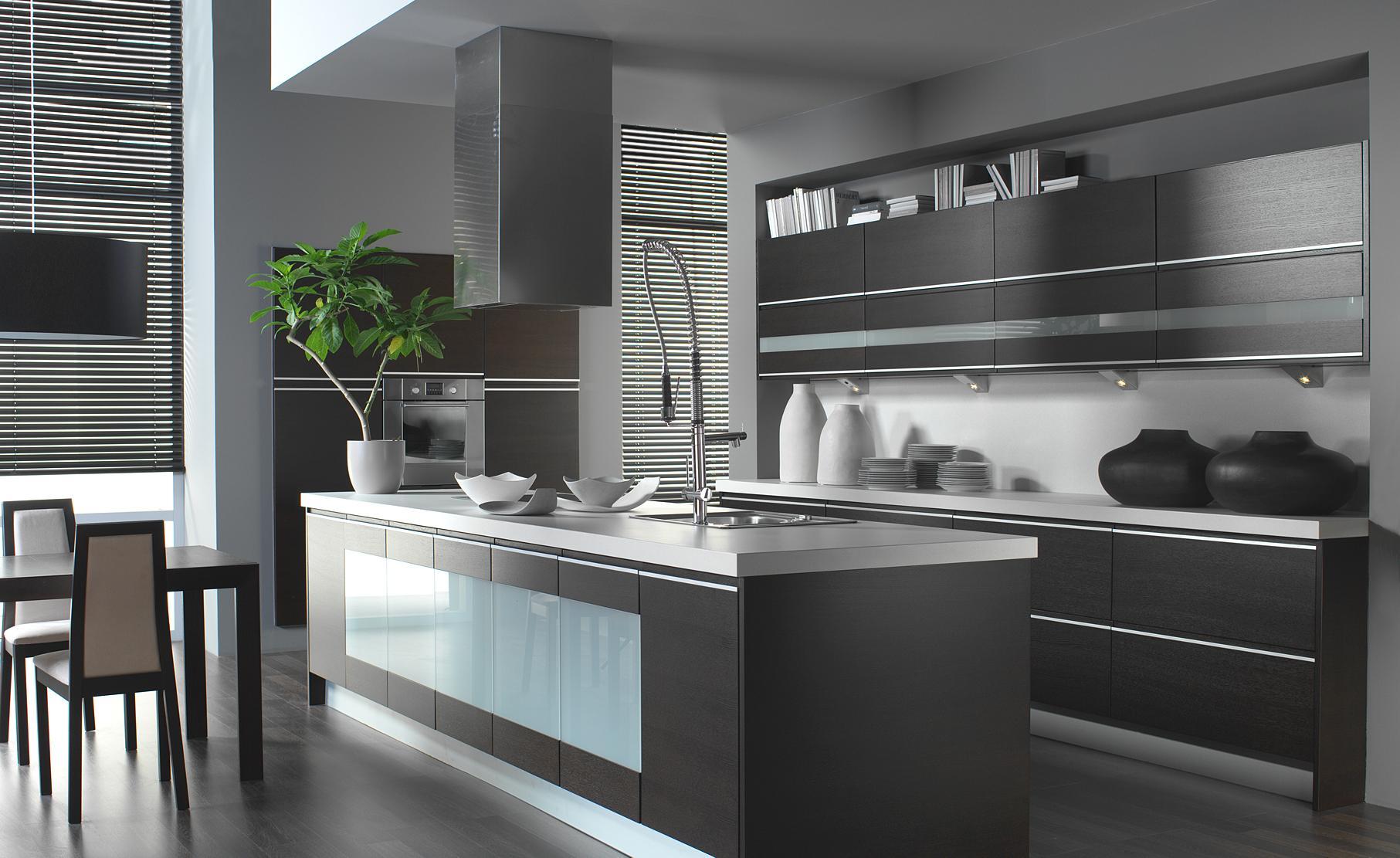 Modern kitchen cabinets denver - Kitchens Remodeling Denver European Kitchens Kitchens Cabinets Denver